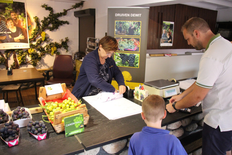 IMG_0082_Rita Dewit-Verhaegen verkoopt druiven in de boerderijwinkel