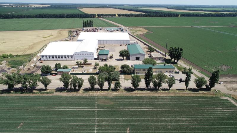 oekraine-jerom-aardappelloods-granex-1250