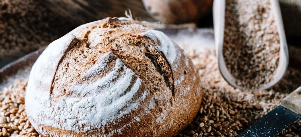 korenbrood-BiobakkerijDeTrog