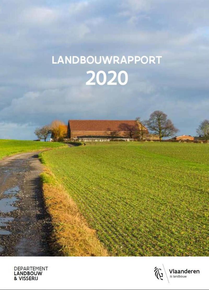 lara cover 2020