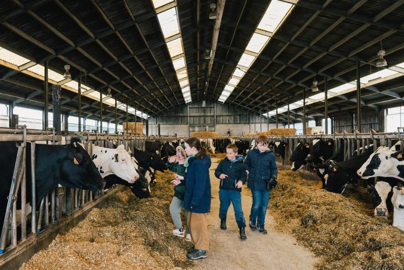 innekegebruers-boerderleren-dezuidrand-gasthuishoeve-hove-6