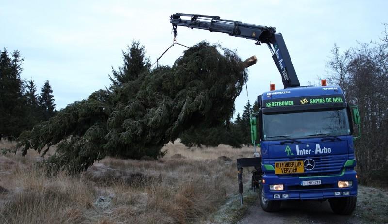 kerstboom--truck-modder-5-1000