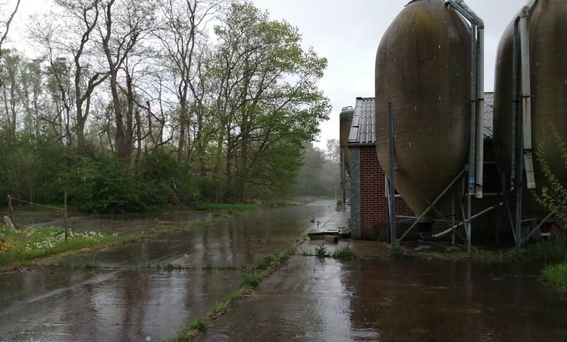 stikstof-varkensbedrijf-diest-afbraak-omgeving-natuur-verharding-1250