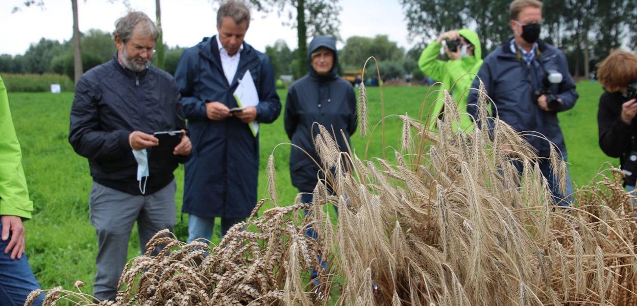 PPAE granen agro-ecologie crevits