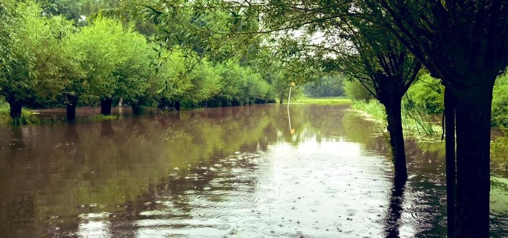 wateroverlast-overstroming-schade-juli2021-2-TwitterIlseJanssens-IlseJa1-1024