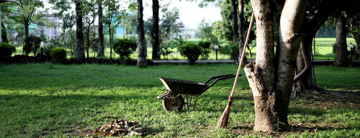 tuin-boom-aanleggen