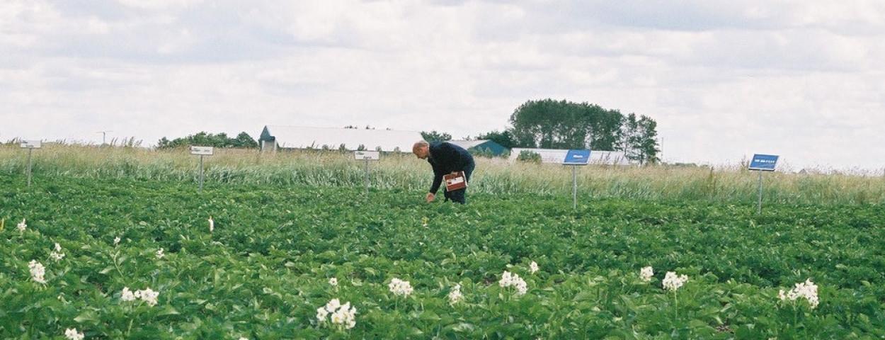 biolandbouw-nederland-NB