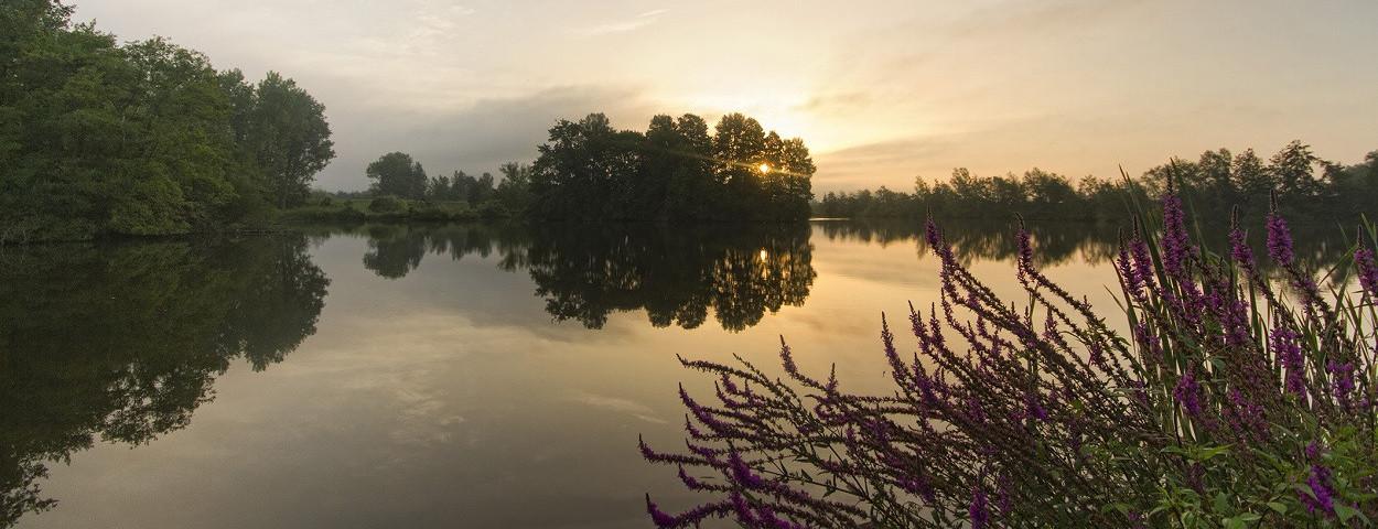 landschapspark-nationaalpark-uitbergen-cWesleyPoelman-1250
