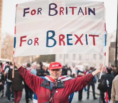 brexit-protest-vierkant2pro-800x700