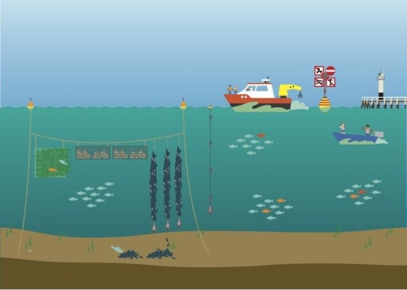 zeeboerderij-colruyt
