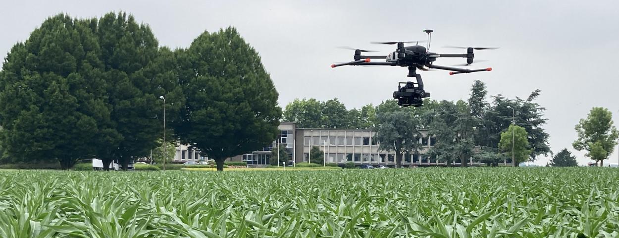 drone ILVO_Matthias Vanheerentals