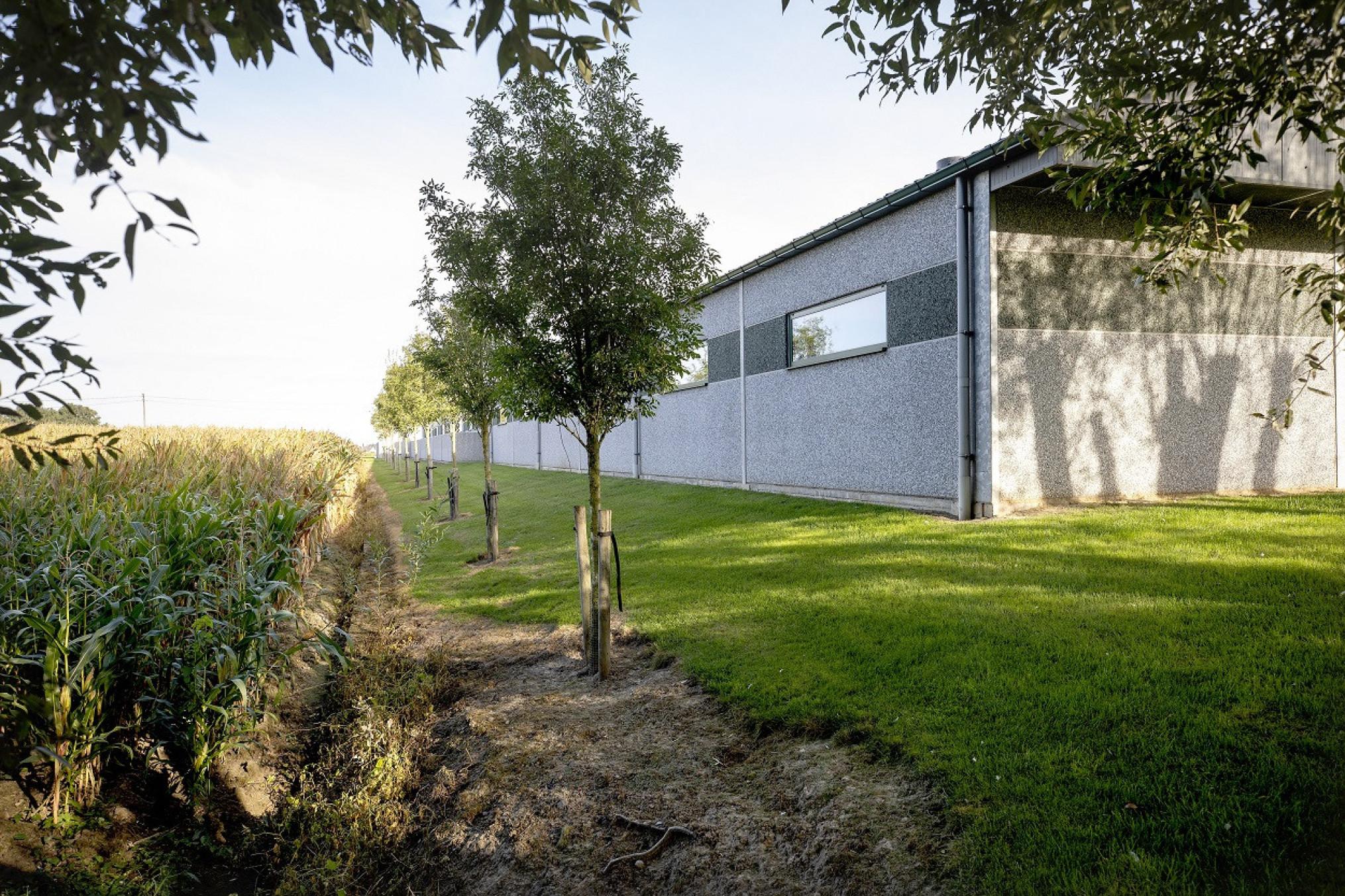 aanplanting-houtkant-landschap-Inagro-2-1250