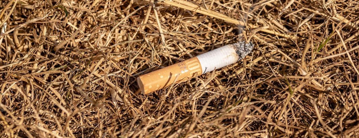 brandgevaar-peuk-sigaret-natuur-1280