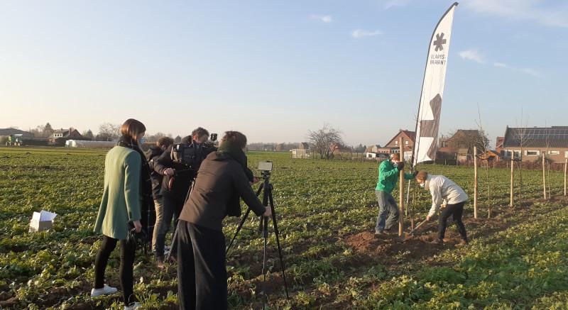 agroforestry aanplant proefperceel Herent_Praktijkpunt Landbouw Vlaams-Brabant