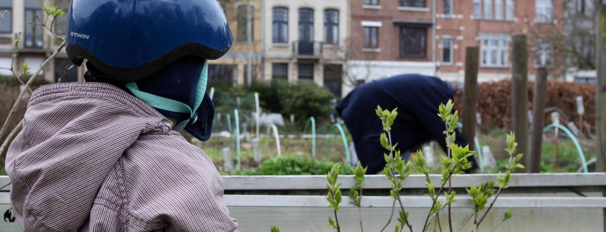 Moestuin_Volkstuin_Antwerpen_AntwerpseTuiniers_Jerom