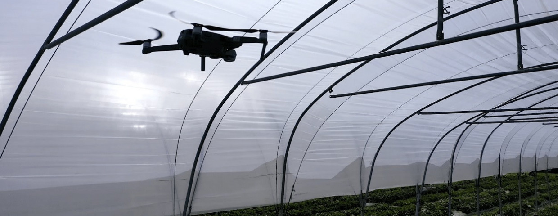drone-aardbeiteelt-flandersMake-1250